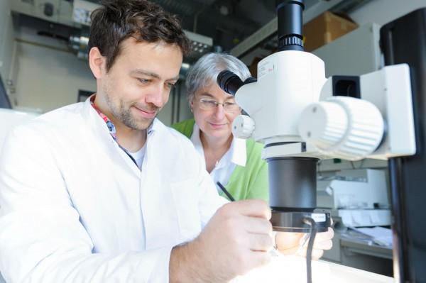Prof. Brunhilde Wirth und Markus Rießland im Labor